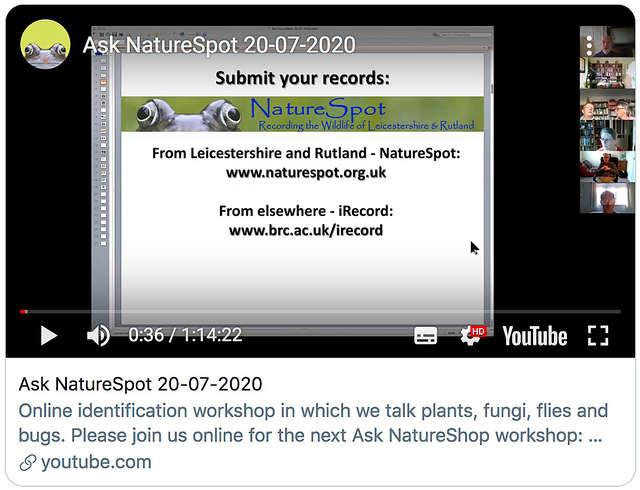 Ask NatureSpot 20.07.2020