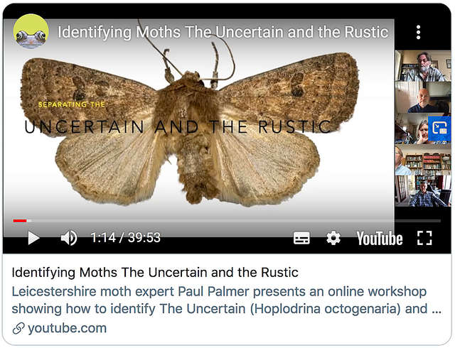 The Uncertain and the Rustic